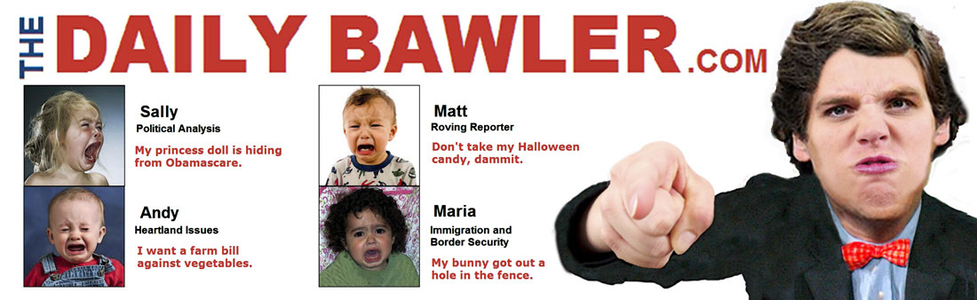 DAILY BAWLER - November 2013