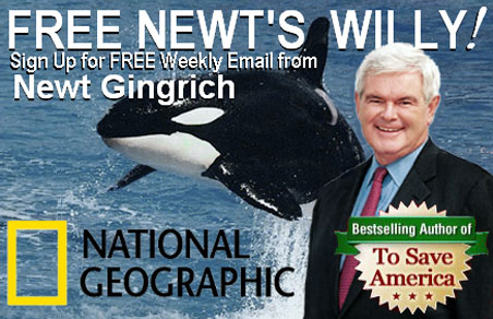 Newt's series about killer whales is being pitched to National Geographic Channel