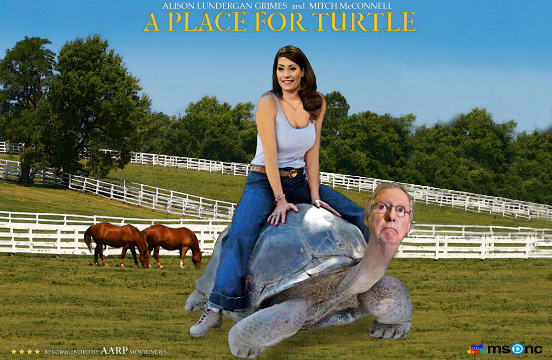 Mitch Mcconnell Sea Turtle Meme - Mitch Mcconnell Memes ...