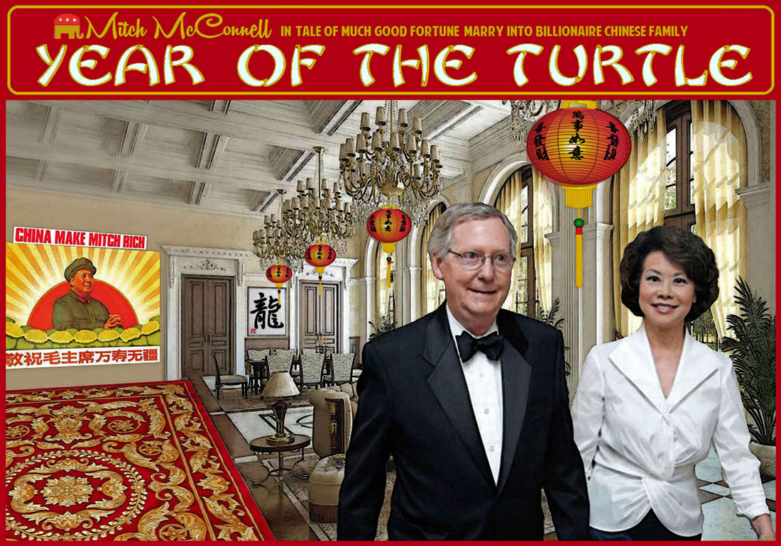 YEAR OF THE TURTLE
