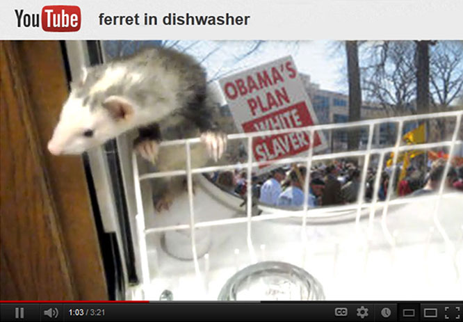 Romney said the Tea Party was like a ferret in the dishwasher.