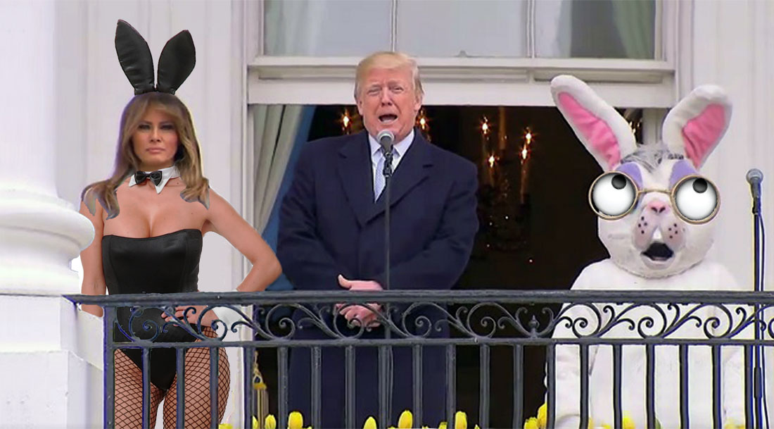 WHITE HOUSE BUNNIES