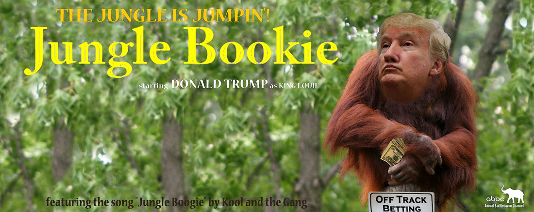 JUNGLE BOOKIE